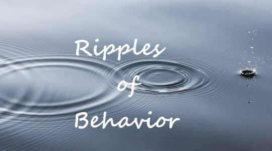 Ripples of Behavior