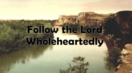 Follow the Lord Wholeheartedly